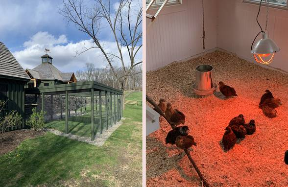 Hudson Valley Chicken House and Run, Staatsburg. NY - Architect: Neumann & Rudy